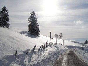 L'hiver dans les Voges - Blog xpression-ecrite.com
