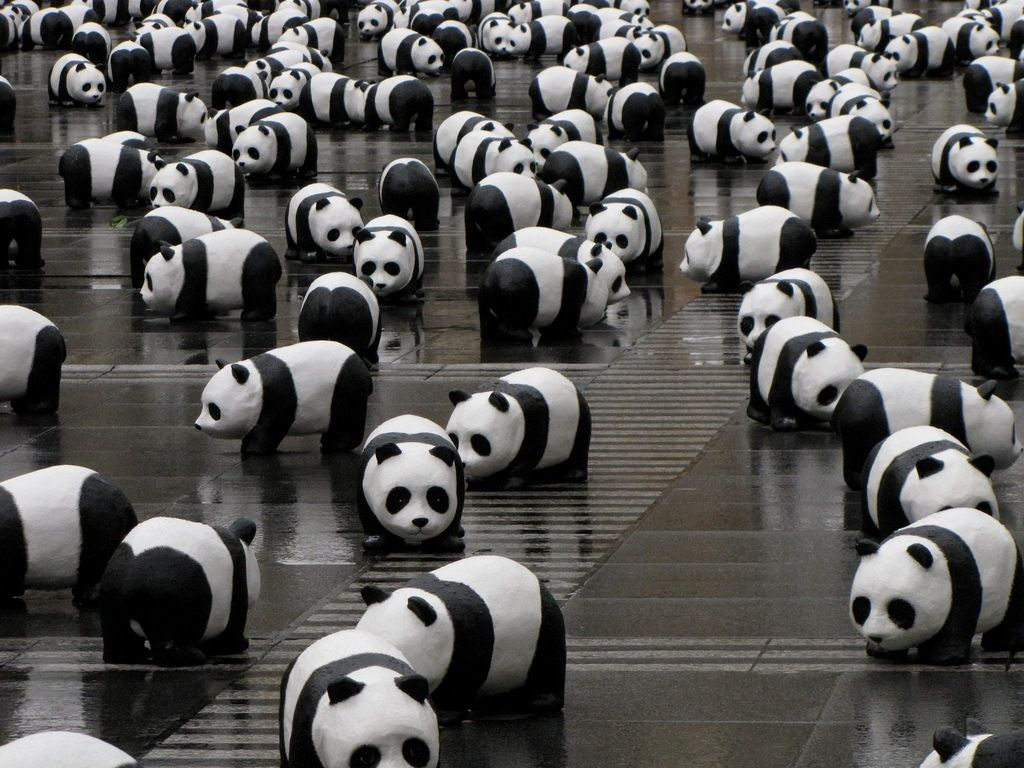 The WWF pandas exposed in downtown Lyon in march 2009