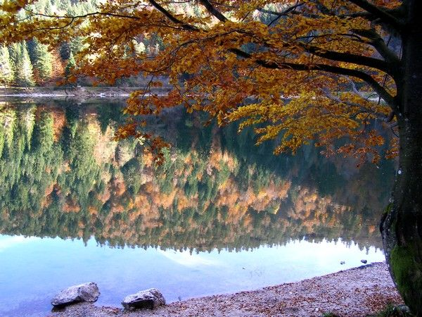 Le lac des Corbeaux en automne - Vosges